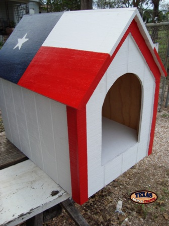Dog House Painted